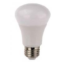 BULB LED, economic line